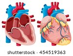 diagram showing human hearts... | Shutterstock .eps vector #454519363