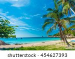 Palm Trees On Luxury Exotic...