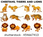 set of cheetahs and tigers... | Shutterstock .eps vector #454667413
