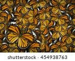 common tiger butterfly   danaus ...   Shutterstock . vector #454938763