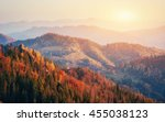 beautiful view of the forest on ... | Shutterstock . vector #455038123