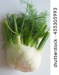 fennel 4 | Shutterstock . vector #455305993