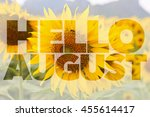 Hello August Word On Sunflower...