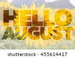 Hello August Word On Sunflower...
