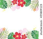 tropical frame | Shutterstock .eps vector #455809123