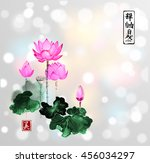 lotus flowers hand drawn with... | Shutterstock .eps vector #456034297