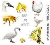 set of birds  white swan ... | Shutterstock . vector #456096277