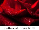 Fresh Red Rose Flower With Sof...