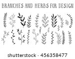 branches and herbs with leaves. ... | Shutterstock .eps vector #456358477