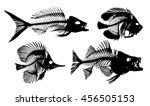 skeletons of fishes. | Shutterstock .eps vector #456505153