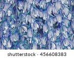 orchid flowers | Shutterstock . vector #456608383