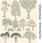 trees. design set. hand drawn...   Shutterstock .eps vector #456642463