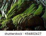 Green Moss Rock Inside En Cave...