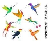 small bird hummingbird set... | Shutterstock .eps vector #456934843