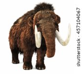 Woolly Mammoth On An Isolated...