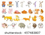 set of animals illustrations.... | Shutterstock .eps vector #457483807