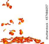 Orange Rose Petals Flying On...