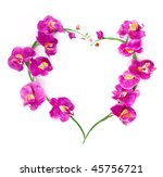 Heart From Pink Orchids With...