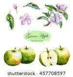 hand drawn watercolor... | Shutterstock . vector #457708597