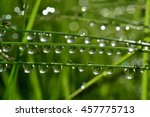 water drops on wet grass with... | Shutterstock . vector #457775713