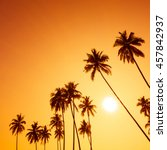palm trees silhouettes on... | Shutterstock . vector #457842937