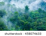 steamy tropical forest with... | Shutterstock . vector #458074633