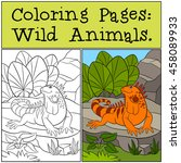 Coloring Pages  Wild Animals....