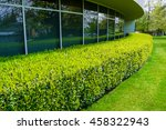green hedge and mowed lawn... | Shutterstock . vector #458322943
