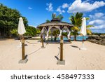 tropical wedding mauritius... | Shutterstock . vector #458497333