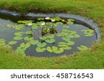 lily pond | Shutterstock . vector #458716543