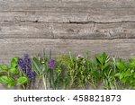 fresh herbs on wooden...   Shutterstock . vector #458821873