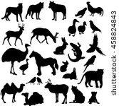 vector  isolated  silhouette... | Shutterstock .eps vector #458824843