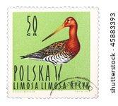 poland   circa 1964  a stamp... | Shutterstock . vector #45883393