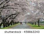 Toyama Japan   April 9 2016  ...
