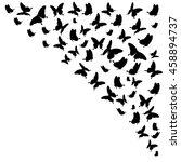 beautiful butterflies  on a... | Shutterstock . vector #458894737