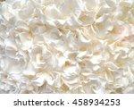 cream texture on a wedding cake ... | Shutterstock . vector #458934253