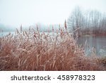 beach frozen lake in winter | Shutterstock . vector #458978323