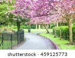 Saint Stephen's Green Park ...