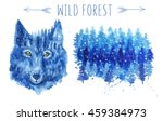 wild wolf ans snowy forest... | Shutterstock . vector #459384973
