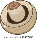 champignon | Shutterstock .eps vector #459387403