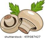 champignon | Shutterstock .eps vector #459387427