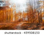 autumn red trees in the forest... | Shutterstock . vector #459508153