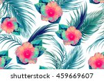 tropical flowers  hibiscus ... | Shutterstock .eps vector #459669607