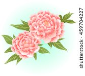 old rose pink peony flower... | Shutterstock .eps vector #459704227