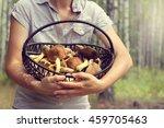 mushroomer holds a wicker... | Shutterstock . vector #459705463