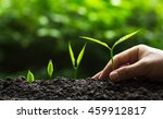 plant a trees | Shutterstock . vector #459912817