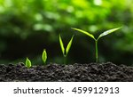 plant a trees | Shutterstock . vector #459912913