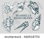 seashell  hand drawn mollusk... | Shutterstock .eps vector #460018753
