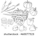 hand drawn collection. harvest... | Shutterstock .eps vector #460077523