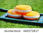 holland's cheese on a green... | Shutterstock . vector #460272817